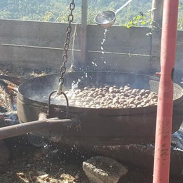 Festa della castagna Andagna